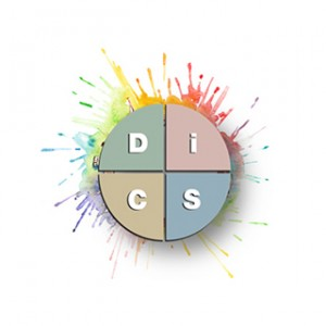 DiSC Profiles Superior